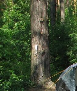 Полезная модель - умывальник в лесу.